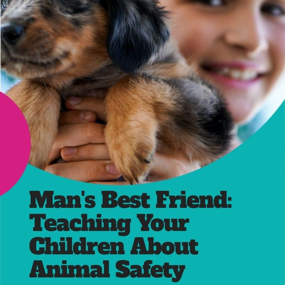 Man's Best Friend: Teaching Your Children About Animal Safety