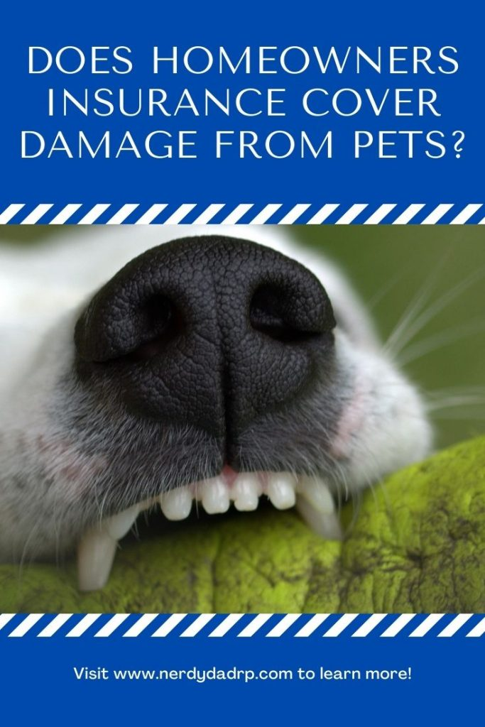 Does Homeowners Insurance Cover Damage From Pets